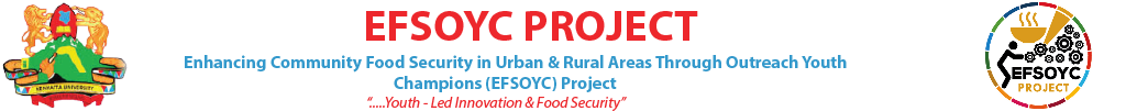 Efsoyc Project