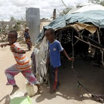 Repatriation of Dadaab refugees to cost Sh20bn