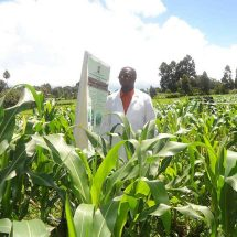 Government investment in agriculture bearing fruit, says CS Bett
