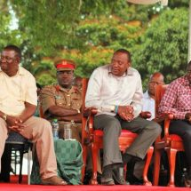 Exit from ODM party continues