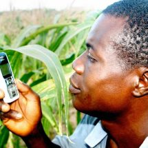 Mobile money eases goods payment