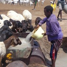 Drought Stricken Families appeal for Help in Garissa