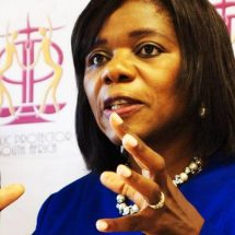 Adv Madonsela must step back and allow processes to unfold