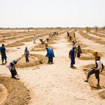 Malawi to receive USD 8 Million Insurance Payout from African Risk Capacity