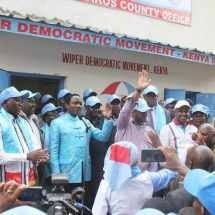 Wiper party appoint Hassan Sheikh as board chair