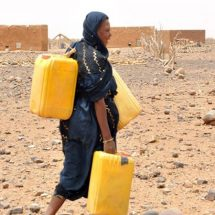 DKK 300 million to combat the acute hunger crisis in the Horn of Africa
