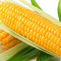 We did not import yellow maize, Transport PS defends government