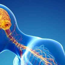 Getting to grips with Parkinson's Disease